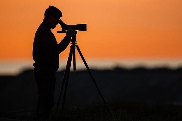 fotograf Daniel Stenberg /N