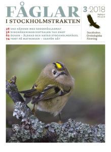 Omslaget av Fåglar i Stockholm nr 3 2018